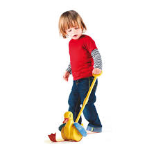 Quack & Flap Push Toy