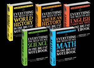 big fat notebooks