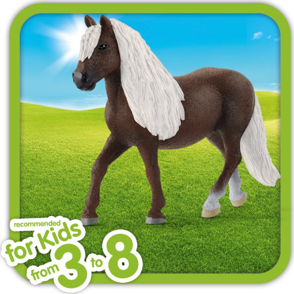Black Forest Mare
