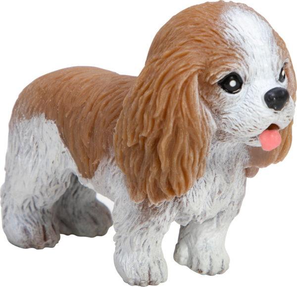 Pocket Pup Astmt 2